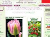 Jardin Vert. experiencia compra plantas través página este vivero