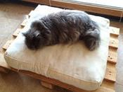 cama para mascotas fácil barata