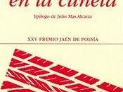 Flores cuneta, Alejandro Céspedes