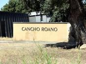 Cancho Roano, España cenizas tartesos
