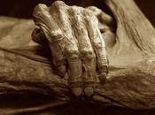 Cientos genes activos hasta días después muerte