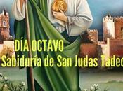 OCTAVO:La Sabiduría Judas Tadeo
