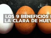 beneficios clara huevo allá qu...