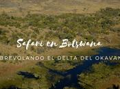 Safari Botswana, Sobrevolando Delta Okavango