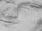resumen circular blogosfera