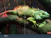 herramientas gratuitas para optimizar imágenes perder calidad