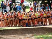 Xxxi cross c.a. suanzes