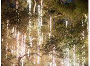 Raining lights nueva forma iluminar boda