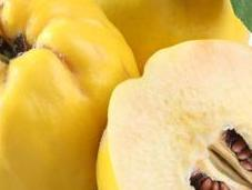 Membrillo, antioxidante anti-inflamatorio saludable