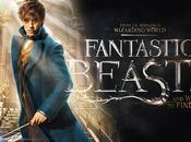 Fantastic Beasts Where Find Them