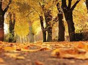¿Por influye otoño nuestro estado ánimo?