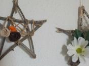Estrella ramas secas