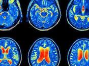 cerebro desarrolla nuevas estrategias cuando envejece