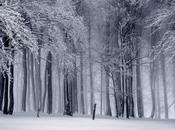 Llegan paisajes invernales… ¿Estamos preparados? Parte