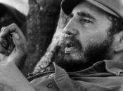 Fidel, girasoles, aura soleada