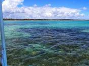 Playa Paripueira. Maceió. Alagoas