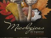jornadas micológicas sigüenza (parte