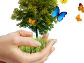 Responsabilidad Social Corporativa: ¿qué beneficios rentabilidad ofrece empresas?