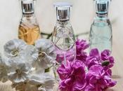 Copias/clones perfumes ¿Seguros?