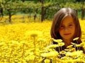 Terapia Flores Bach para niños dificultad aprendizaje