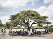 Empoderando comunidad rural: Desarrollo proyecto emergencia nutricional Etiopía