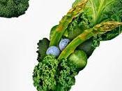 Nutrición basada evidencia...¿y nada más?