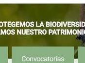 Juegos Reciclaje Educación Medioambiental Fundación Biodiversidad