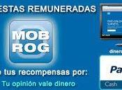 Mobrog portal para hacer encuestas online
