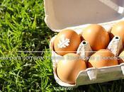 Guía para comprar huevos. Etiquetado beneficios