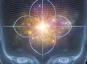 Siete suplementos para aumentar función Glándula Pineal