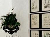 bastidor para mural botánico
