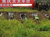 """Mujeres chinas utilizan """"Meditación Cementerio"""" para enfrentar divorcio"""