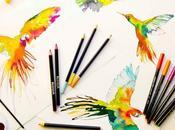 Libridú ilustración creativa hace soñar