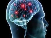 Simulador capaz suministrar información directamente cerebro