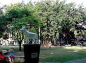 Parque Perro, Homenaje Singular