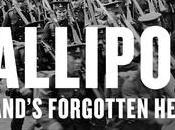 Irlandeses Galípoli (1915-1916)