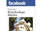 Presentación Bodega Marta Maté
