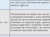origen causas incendios forestales Chile