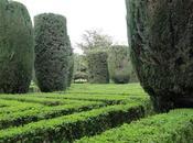 Parques jardines para disfrutar Primavera Barcelona