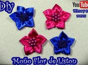Diy. Moño Flor Liston Mirna manus