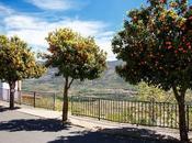 Valle Jerte floración Rebollar, mirador privilegiado