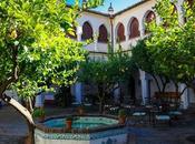 Guadalupe (III). Rincones entre naranjos limoneros Patio Colegio Infantes