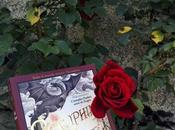 Dragones rosas ¡Feliz Sant Jordi! libro!