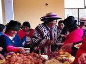 Detrás Epidemia Obesidad: Alternativas orgánicas sustentables (III)