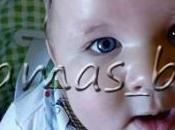 Diario bebé: meses glotón para todo