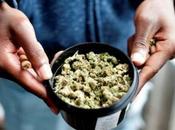 rompecabezas #empresarios #marihuana: ¿Qué hacer dinero?