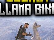 Conseguir moto llama Ghost Recon Wildlands