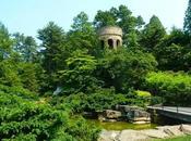 Paraíso Amantes Botánica Jardinería!