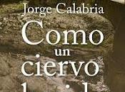 Como ciervo herido. Jorge Calabria
