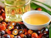 aceite palma peligroso para salud?